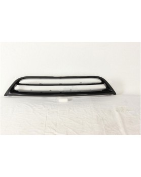 Radiator Grille Lower Outer