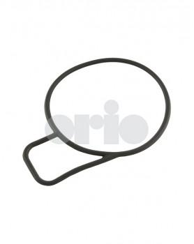 Throttle Body O-Ring