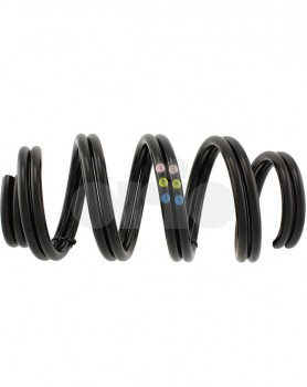 Front Suspension Spring Set - Sports Chassis